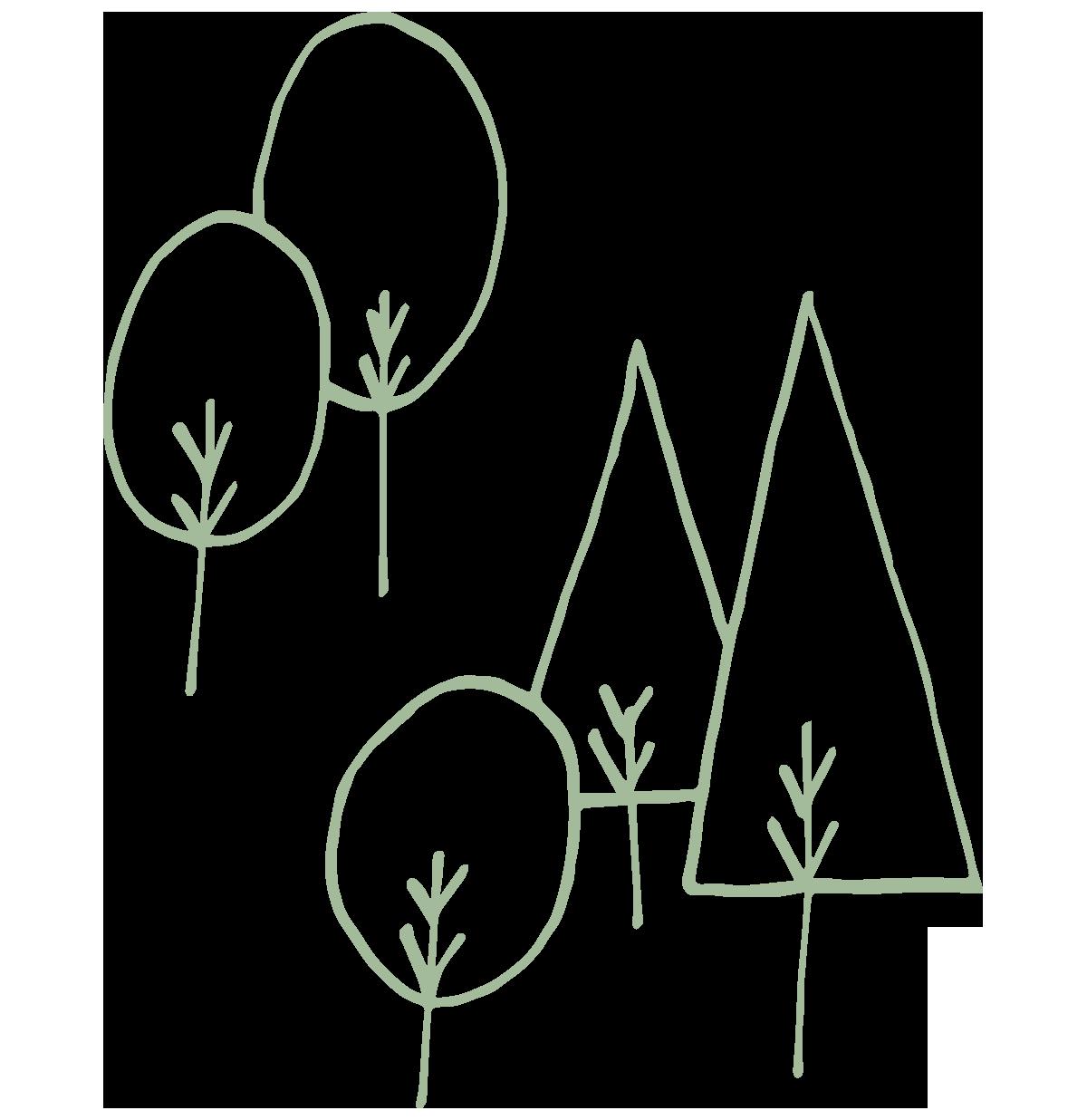 So Stockel - Tree